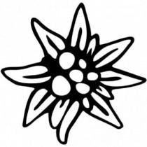 Aufkleber Edelweiss V1