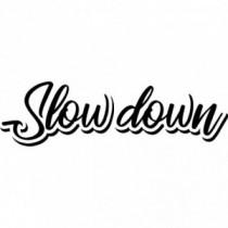 Slow down V4