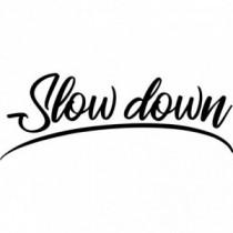 Slow down V2