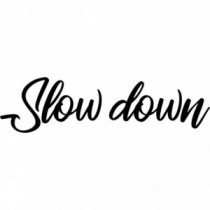Slow down V1